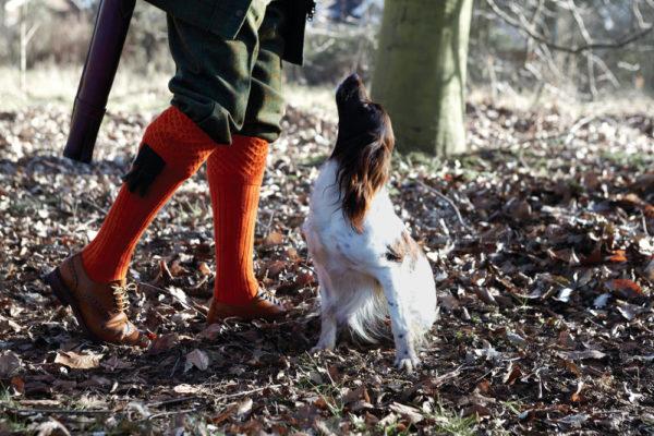 chelsea orange shooting socks